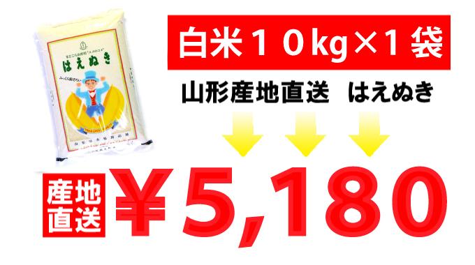 山形県産はえぬき産地直送5kg×2袋