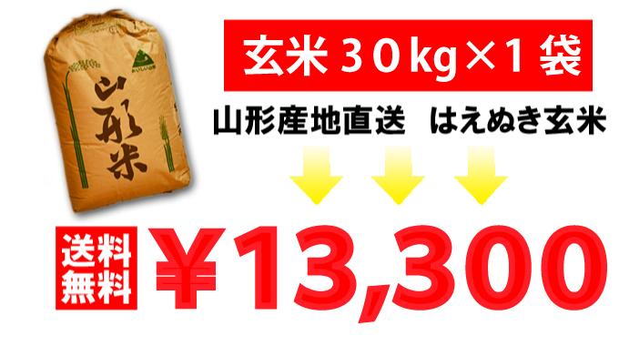 山形産地直送はえぬき玄米30kg送料無料