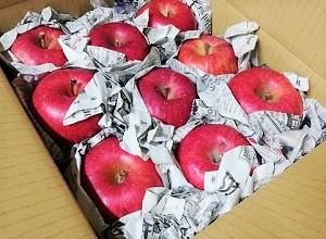 りんごの梱包