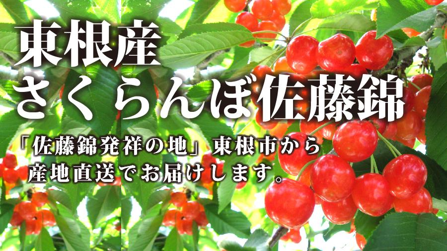 東根の佐藤錦